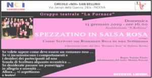 Spezzatino in salsa rosa – 13/01